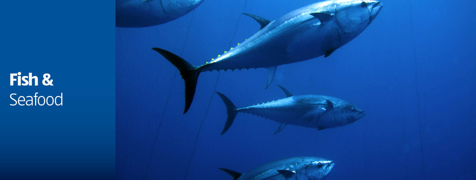 Fish & Seafood - ALDI Australia